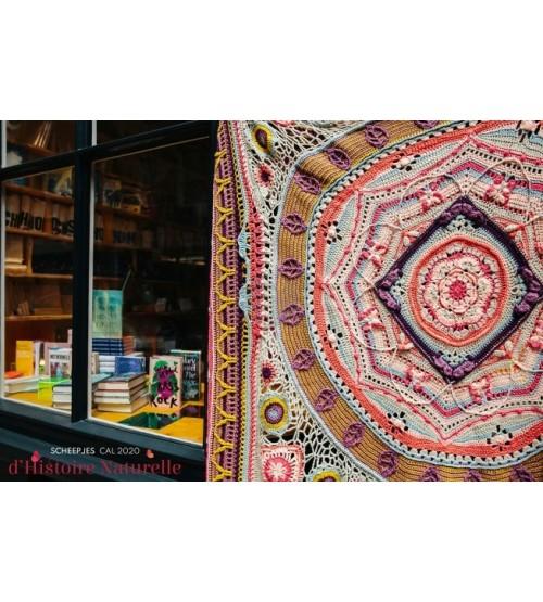 Scheepjes Cal 2020  d 'Histoire Naturelle  Conchologie  colour crafter